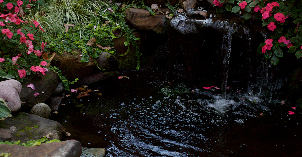 04-10-14-water-landscaping