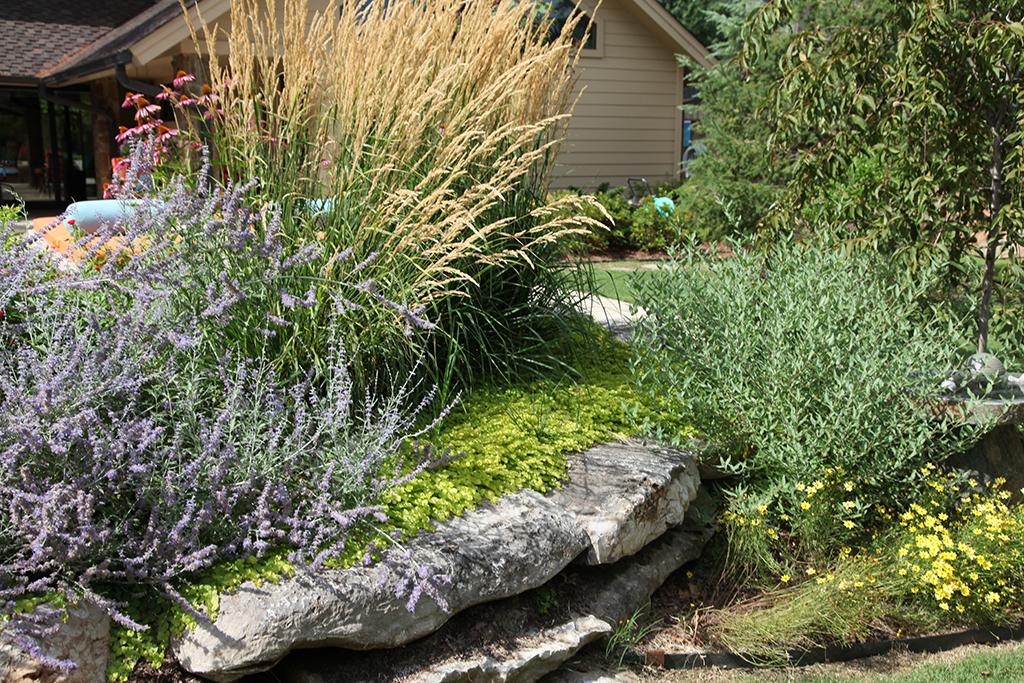 low maintenance landscaping tulsa