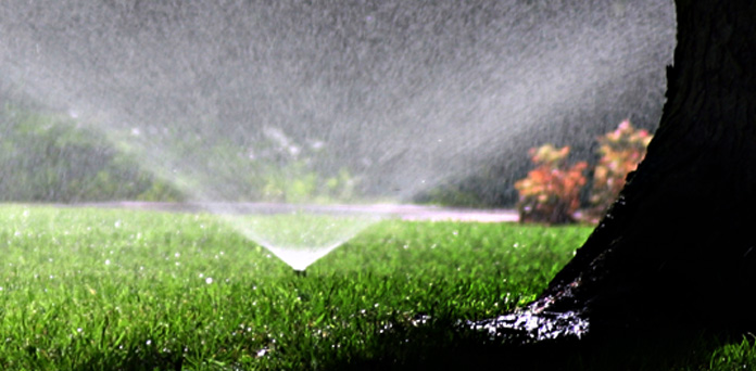 oklahoma-landscape-Drip Irrigation 1