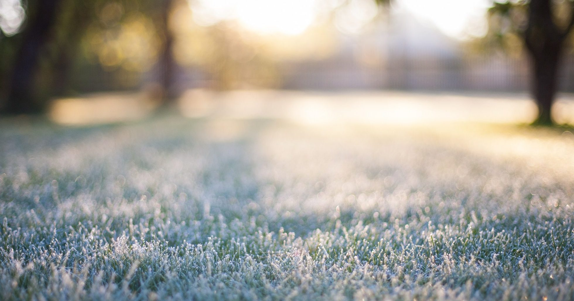 winterize your sprinkler to prevent frozen lawns and broken pipes